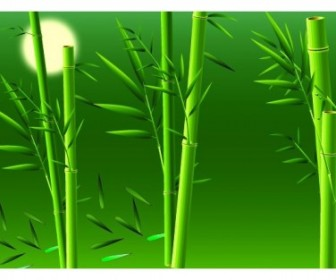 Vector Realistic Bamboo Nature Vector Graphics