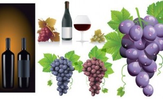 Vector Wine Grapes Vector Art
