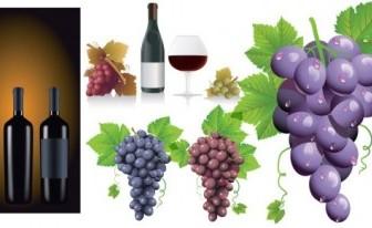 Vector Wine Grapes Vector Art