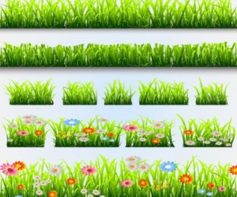 Grass Plant Background Element Vectors