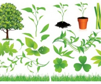 Green Trees and Leaves Vector Set