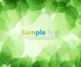 Vector Green Leaves Background Design
