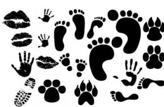 Footprint  Fingerprint Vector Silhouettes