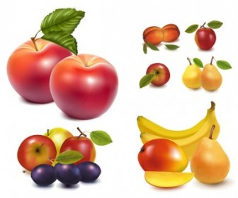 Realistic Fruits Vector Pack