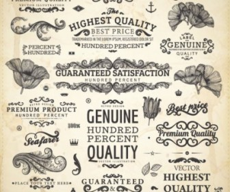 Classic Lace Elements Vector Pack