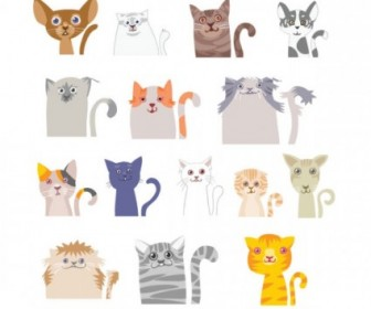 Lovely Cat Face Vector Cartoon