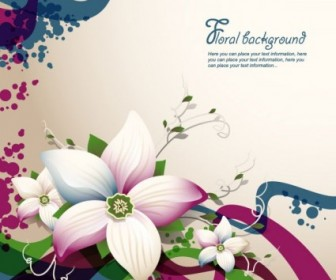 Fine Flowers Shading Frame Background Vector
