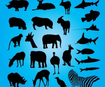 Silhouette Animal Vector Collection