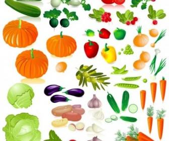 Vector Vegetables Image 02 Vector Art