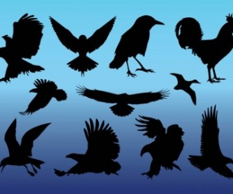 Vector Birds Vector Art