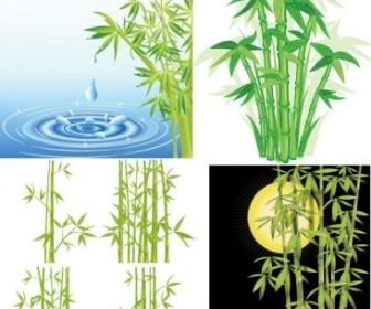 Vector Bamboo Vector Art