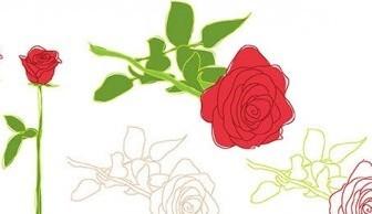 Vector Rose Flower Leaf Outline Nature Vector Graphics
