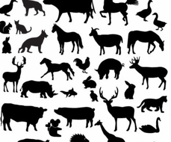 Vector Farm Animal Silhouette Collection Silhouettes Vector Graphics