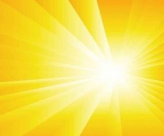 Vector Sun Burst Summer Background Vector Art
