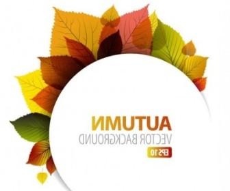 Vector Design Graphics Autumn Leaf 1 Vector Art