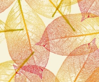 Vector Leaf Autumn Vector Art