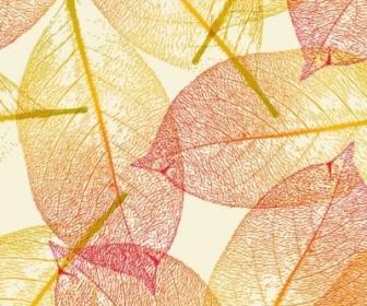 Vector Leaf Autumn Vector Art