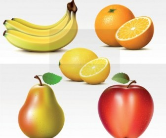 Vector Fresh Fruits Vector Art