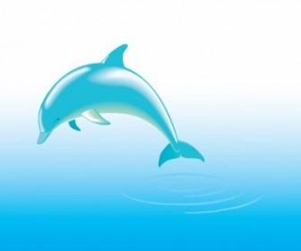 Vector Dolphin Vector Art