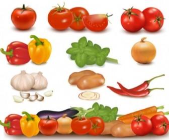 Vector Vegetables Image 01 Vector Art