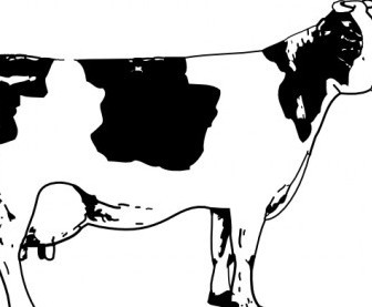 Vector Cow Vector Clip Art