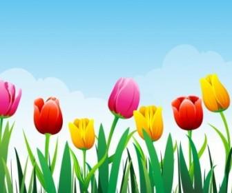 Vector Tulip Background Flower Vector Art