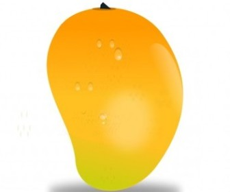 Vector Mango Fruit Vector Clip Art