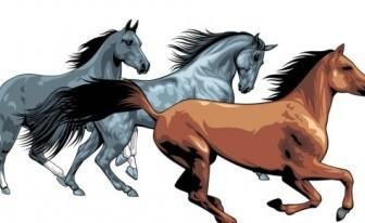 Vector Horse 04 Animal Vector Graphics