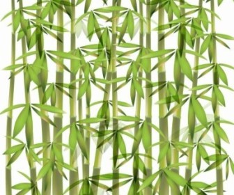 Vector Bamboo Illustration Vector Art