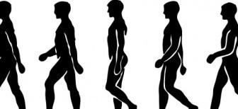 Vector Walking Person Silhouette Vector Clip Art