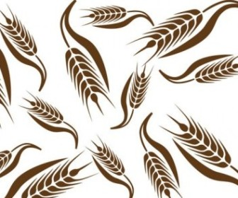 Vector Wheat 02 Pattern Vector Art