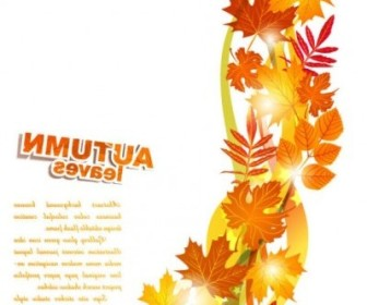 Vector Beautiful Autumn Leaf 02 Background Vector Art