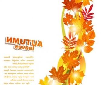 Vector Beautiful Autumn Leaf 02 Background Vector Art
