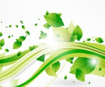 Vector Eco Leaves And Green Wave Vector Art