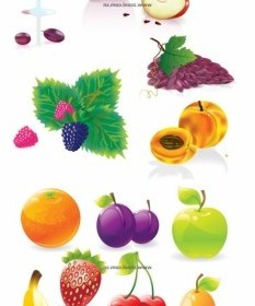 Vector Several Common Fruits Vector Art