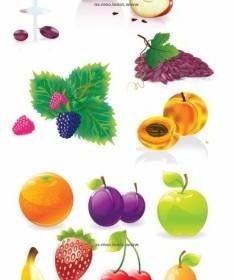 Vector Several Common Fruits Vector Art