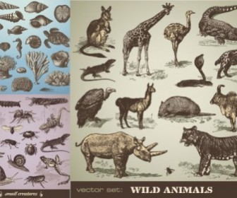 Vector Handpainted Animals Animal Vector Graphics
