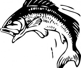 Vector Jumping Fish Vector Clip Art