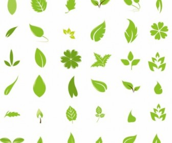 Green Leaf Design Elements Vector Nature