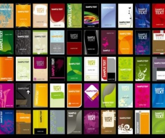 Variety Colorful Of Business Card Template Vector Cards