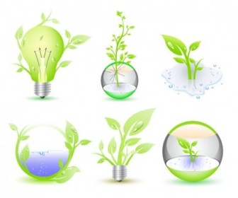 Green Eco Icon Collection Vector