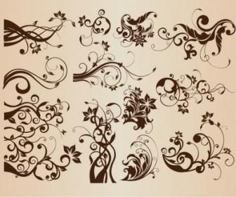 Vintage Floral Elements For Design Vector Set