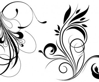 Free Floral Vector Flower