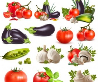Realistic Vegetables Vector Illustration