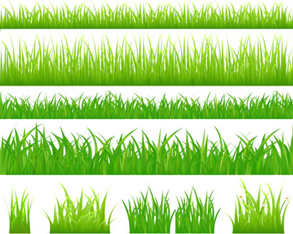 Grass Borders Template - Ai, Svg, Eps Vector Free Download