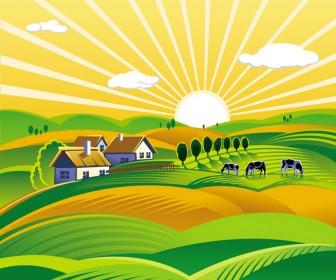 Rural landscape with vineyard vector