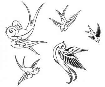 Vector Birds illustration