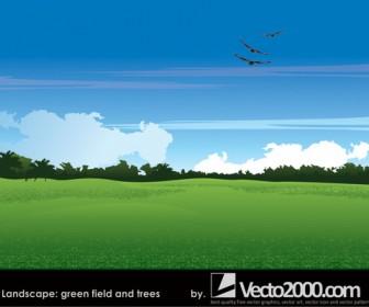 Landscape Green field