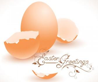 Free Vector Illustration Eggshell