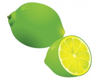 Lemon vector